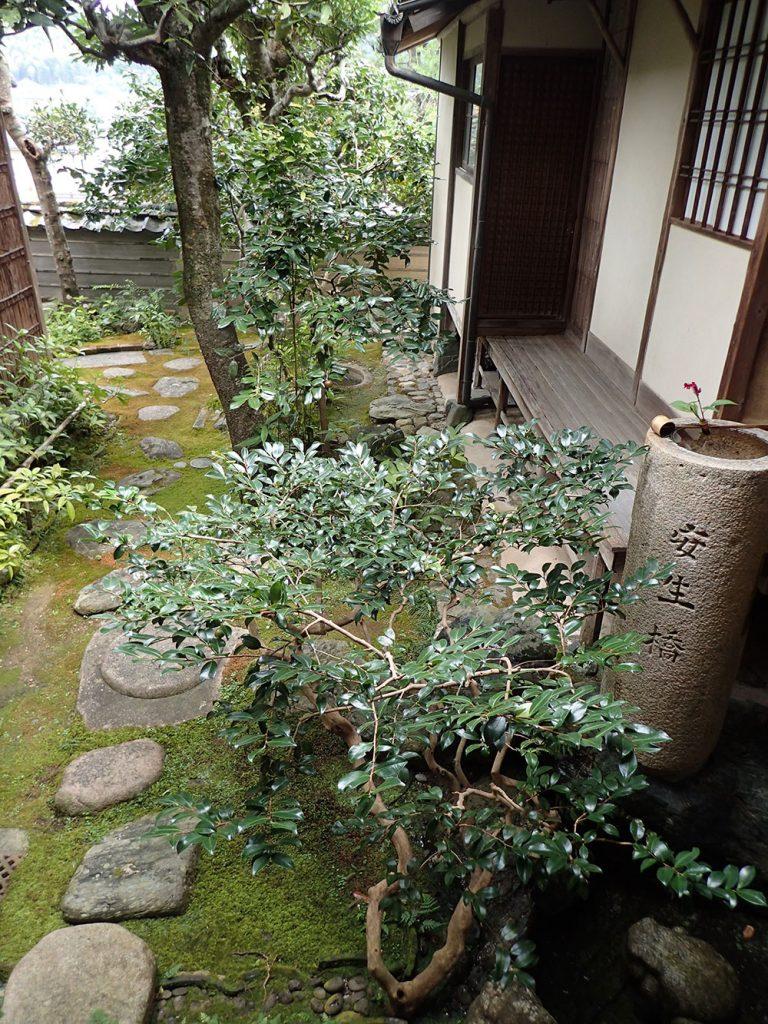 美観だけでなく趣も凝らされた中庭