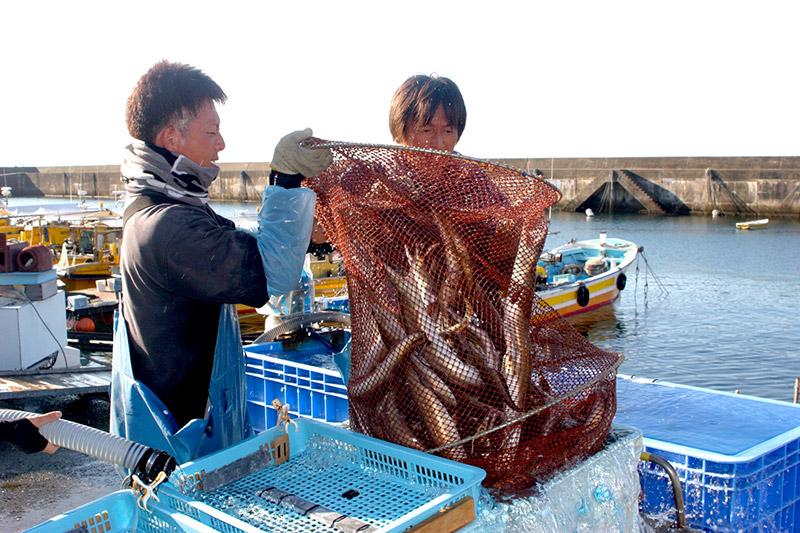 双海のイケメン漁師さんたち